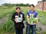 A garden mentoring project through the White Earth Tribal and Community College enable youth to connect with the earth while harvesting healthy foods. Photo source: Blue Cross and Blue Shield of Minnesota Foundation.